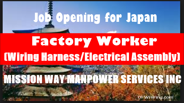 Job Hiring for Japan factory worker (wiring harness electrical assembly) job opening wiring harness jobs in abroad at mifinder.co